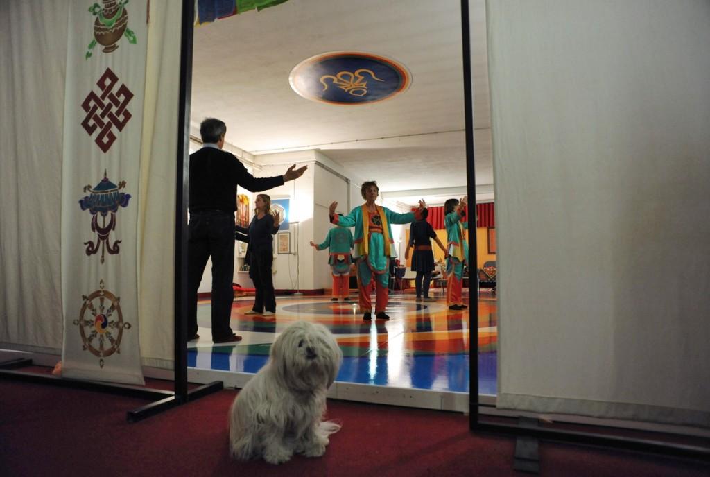 Roma. 17/03/2012: Centro Zhenphenling, Comunit‡ Dzogchen - Merigar West. Giornata mondiale della danza Vajera..©Andrea Sabbadini
